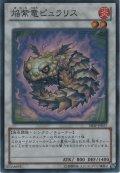 焔紫竜ピュラリス【スーパーレア】
