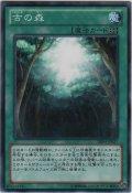 古の森【ノーマル】