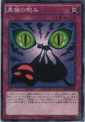 黒猫の睨み【ノーマル】