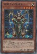 聖騎士の盾持ち【ノーマルパラレル】