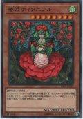 椿姫ティタニアル【ノーマル】