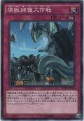 壊獣捕獲大作戦【ノーマル】